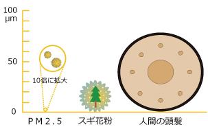 PM2.5、スギ花粉、人間の頭髪の大きさ比較